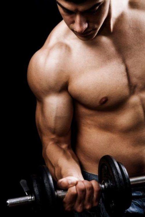 Wer seine Muskeln für den Sommer in Form bringen möchte, ist bei Muscleshop.at genau richtig!Fotos: handout/Muscleshop.at