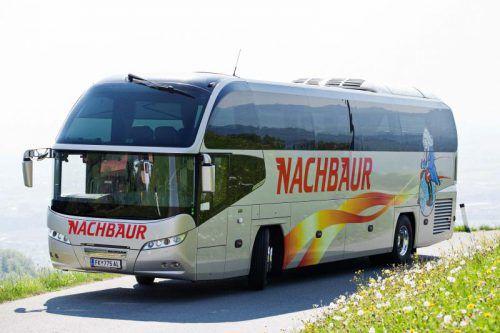 Mit dem Komfortbus geht es jeden Freitag und Montag an die italienische Adria. Fotos: handout/Nachbaur Reisen, Shutetrstoock