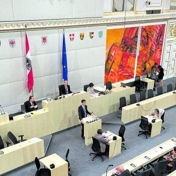 <p>Hofburg. Bundesrat: In seiner Rede betont der Landeshauptmann die wirtschaftliche Spitzenreiterposition von Vorarlberg.</p>