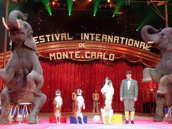 Spannung, Spaß und akrobatische Meisterleistungen beim berühmtesten Zirkusfestival der Welt.Fotos: handout/Weiss Reisen