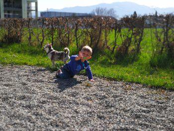 "<p class=""caption"">Elias (1) mit seinem Hund Duke.</p>"