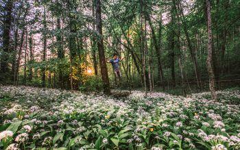 """<p class=""""caption"""">Samuel aus Dornbirn beim Slacklinen in einem blühenden Bärlauchwald.Fotos: handout/Privat</p>"""