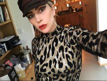 <p>Tierisch: Sängerin Lady Gaga liebt Animal-Prints.</p>