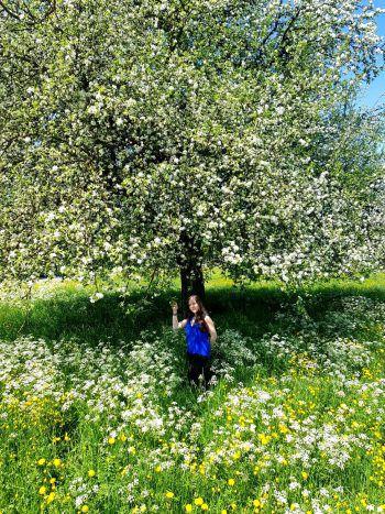 <p>Arlind und der Frühling.</p>