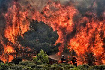 Die verheerenden Brände in der Nähe von Athen forderten mindestens 88 Opfer.Fotos: APA