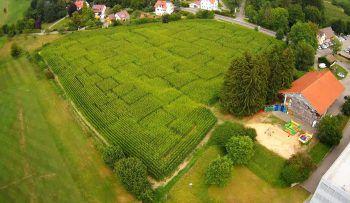 Das Maislabyrinth in Lindau ist ein Spaß für die ganze Familie. Foto: handout/Gerald Strüning
