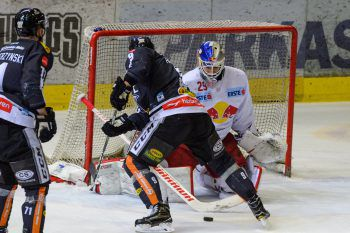 Am Freitag treffen die Bulldogs auf die Salzburger, gegen die sie in den vergangenen Saisonen oft gute Leistungen gezeigt haben.Fotos: Stiplovsek, GEPA