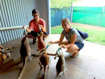 Eva zusammen mit ihrem Freund beim Besuch eines Waisenhauses für Kängurus in Kununura, Australien.Fotos: handout/privat