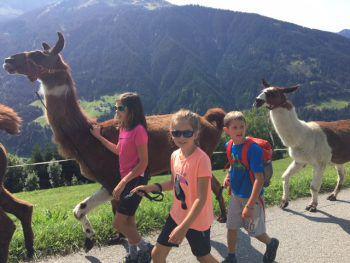 """<p class=""""caption"""">Jana, Silas und Lea haben bei ihrem Herbstspaziergang eine außergewöhnliche Begleitung.</p><p class=""""caption"""" />"""