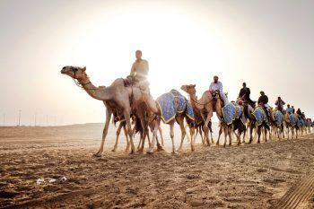 """<p class=""""caption"""">Auf Kamelen reiten – ein ganz besonderes Erlebnis für die großen und kleinen Gäste. Fotos: handout/High Life Reisen</p>"""