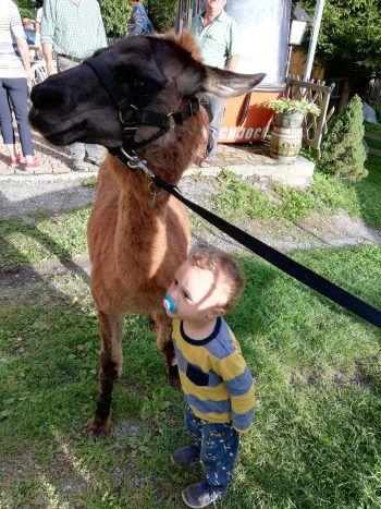 """<p class=""""caption"""">Eine Einsendung von Martina: """"Ghia ist zwar nicht unser Lama, aber eine gute Freundin für meinen Sohn Livio (2).""""</p>"""