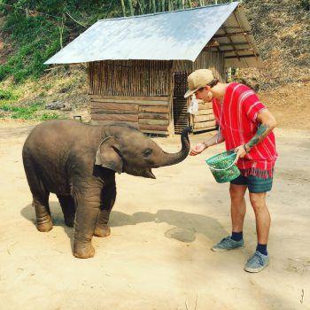 """<p class=""""caption"""">Der 24-Jährige hatte sogar die Gelegenheit, einen kleinen Elefanten in Chiang Mai, Thailand, zu füttern.</p>"""