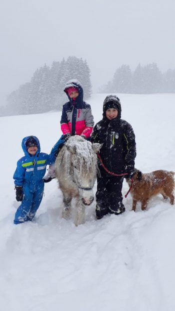 Lina, Leonie und Nico mit Pony Sina und Hund Sissi.Fotos: Privat