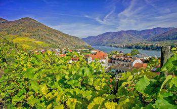 Sowohl Landschaft als auch Kultur der Wachau werden die Reisenden begeistern.