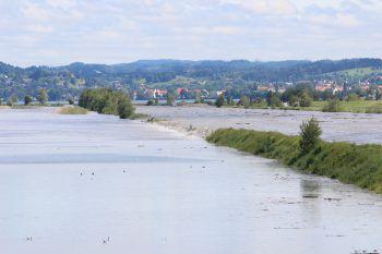 Der Rhein führt aktuell deutlich sichtbar Hochwasser.Foto: VOL.AT/Vlach