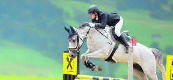 Bei dem Raiffeisen-Springreitturnier wird hochkarätiger Pferdesport gezeigt. Fotos: RFV Bregenzerwald, Sportfoto MO