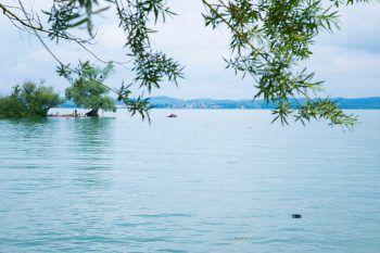Natur pur am Bodensee – die gilt es aber auch mittels Klimaschutz zu bewahren.Fotos: Paulitsch, VLK