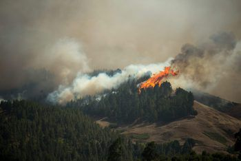 Seit Samstag toben heftigeWaldbrände auf der Insel. Foto: AFP