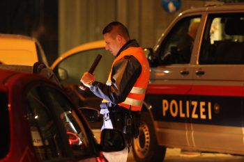 Zwei Kennzeichen nahmen die Polizisten während der Kontrolle ab. Foto: APA