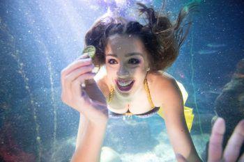 """<p>Berlin. Abgetaucht: Eine """"Meerjungfrau"""" schwimmt in einem Becken des Sea Life Aquariums in der deutschen Bundeshauptstadt.</p>"""