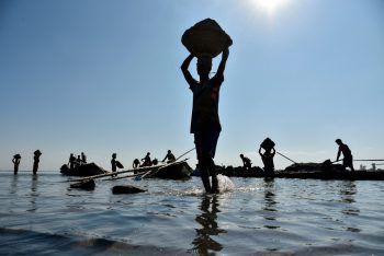 <p>Barpeta. Im Gleichgewicht: Arbeiter tragen im Flussbett des Beki Flusses Sand ab und transportieren ihn auf dem Kopf weg.</p>