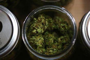 Das Cannabis wurde auch nach Vorarlberg geliefert. Symbolfoto: Reuters