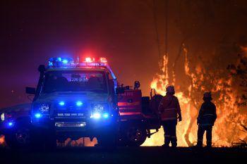Die Feuerwehrleute kämpfen verzweifelt gegen die Flammen.Fotos: Reuters