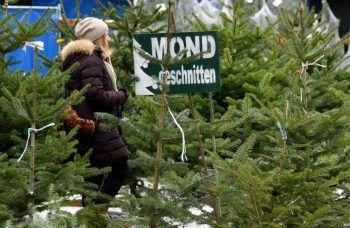 Zahlreiche Weihnachtsbäume wurden mit Buttersäure beschmiert. Symbolfoto: APA