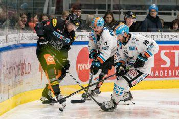 Am Freitag musste sich der DEC Linz mit 2:6 geschlagen geben. Foto: Stiplovsek