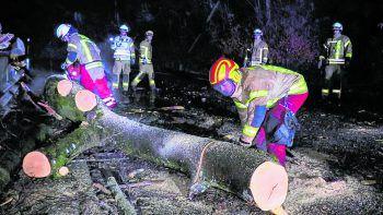 In der Bildsteinstraße musste die Feuerwehr einen umgestürzten Baum entfernen – nur ein Einsatz von vielen weiteren.Fotos: Shourot, Feuerwehr Bludenz, Feuerwehr Dornbirn, Mohrenbrauerei