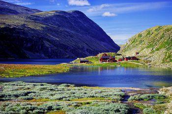 In Norwegen gibt es über eintausend Fjorde. Auf dieser Reise bekommen die Teilnehmer viele tolle Einblicke in die Landschaft.