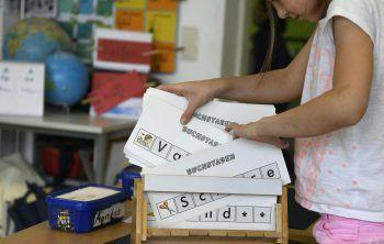 """<p class=""""caption"""">Themenschwerpunkt Migration und Sprache in der Schule. Fotos: APA, Lerch, Stiplovsek, ÖVP, Grüne</p>"""