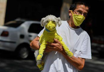 Caracas. Geschützt: So schützen sich Hund und Herrchen in der venezolanischen Hauptstadt vor dem Coronavirus.