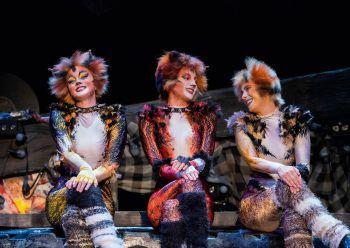 """<p class=""""caption"""">Das weltberühmte Musical CATS wird in Wien in deutscher Sprache aufgeführt.</p>"""