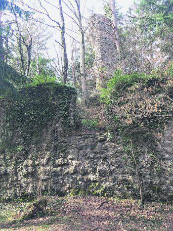 Ein Ausflug in die alten Gemäuer der Ruine Althofen lohnt sich immer. Foto: handout/Ölz