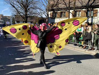 """<p class=""""caption"""">Ein schöner Schmetterling verzauberte die Zuschauer.</p>"""