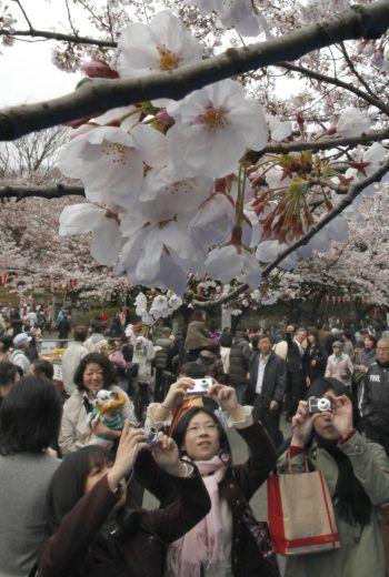 Solche Fotos von Besuchermassen wird es dieses Jahr nicht geben. Foto: AP