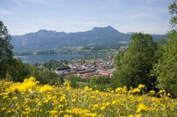 Salzkammergut             Das Salzkammergut mit Bad Ischl und Schifffahrt auf dem Wolfgangsee wird mit Weiss Reisen vom 8. bis 10. September besucht. Die herrliche Seenwelt gibt es bei Weiss Reisen um 338 Euro zu bestaunen.