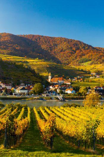 """<p class=""""title"""">               Wachau             </p><p>Die Wachau ist mehr als nur ein romantisches Donautal. Bei der Reise vom 18. bis 21. Juni ist ein Besuch der Ausstellung """"Garten Tulln"""" mit im großen Leistungspaket. Das gibt es bei Weiss Reisen um 569 Euro. Es sind noch Restplätze frei!</p><p />"""