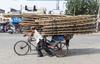 <p>Amritsar. Voll beladen: Ein indischer Rickscha-Fahrer hat eine schwere Last geladen.</p>