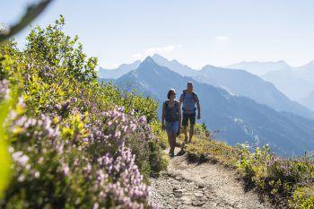 """<p class=""""title"""">               Blumen-Wanderlehrpfad Faschina              </p><p>Von der Mittelstation bis zur Bergstation der Stafelalpbahn in Faschina entdeckt man die Pflanzenvielfalt des Großen Walsertals. Neben dem geschützten Türkenbund und den klassischen Alpenrosen findet man hier über 150 Pflanzenarten. Die Lehrtafeln werden nach der aktuellen Blütezeit ausgetauscht.</p><p />"""