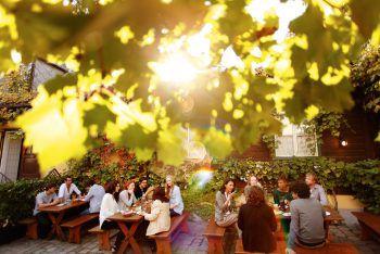 Buschenschank und Heurigen             In gemütlichen Gastgarten Spritzwein trinken und die lauen Sommernächte genießen. Fotos: handout/High Life Reisen/Shutterstock