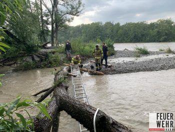 Der Junge wurde nach den starken Regenfällen über eine Leiter aus der Bregenzer Ach gerettet.Foto: VOL.Live