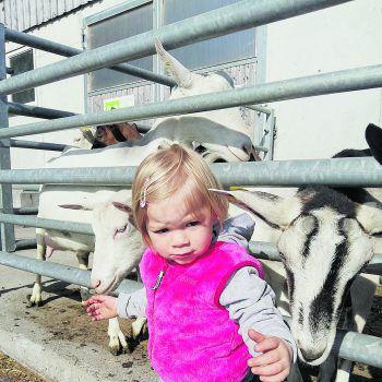 """<p class=""""caption"""">Die kleine Magdalena mit ihren Ziegen.</p>"""