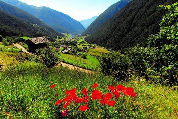 <p>Klang der Berge: Ein Wochenende im Herzen der Dolomiten – im Val di Sole verbringen und den Klängen der weltbekannten Bergsteigerchöre aus dem Trentino lauschen.Termin: 17. bis 20. September</p>