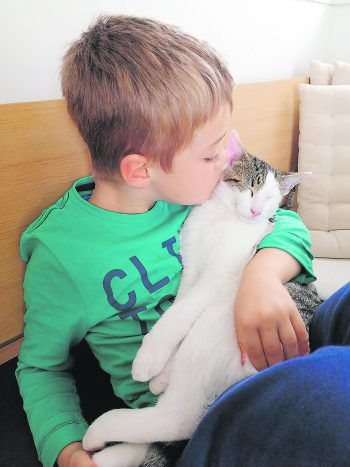 """<p class=""""caption"""">Raphael (6) mit seinem Kater Ingo. Fotos: privat</p>"""