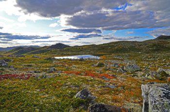 """<p class=""""caption"""">Uvdal in der Nähe des Hardangervidda Nationalparks.</p>"""