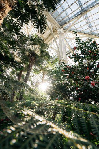 """<p class=""""title"""">               Tropische Temperaturen             </p><p>In Wien kann es richtig heiß werden – nicht nur im Sommer. Das Haus des Meeres, das Schmetterlinghaus im Burggarten und das Palmenhaus in Schönbrunn bringen tropisches Klima und mit ihnen viele exotische Tiere in die Stadt.</p>"""