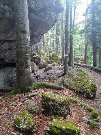 """<p class=""""caption"""">Kleiner Grillplatz unter einem Felsen. </p>"""