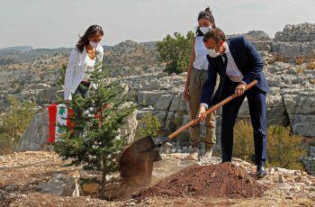 <p>Beirut. Symbolisch: Bei einem Regierungsbesuch im Libanon zur 100-jährigen Staatsgründung hat der französische Präsident Emmanuel Macron im Rahmen einer Zeremonie eine Zeder gepflanzt.</p>